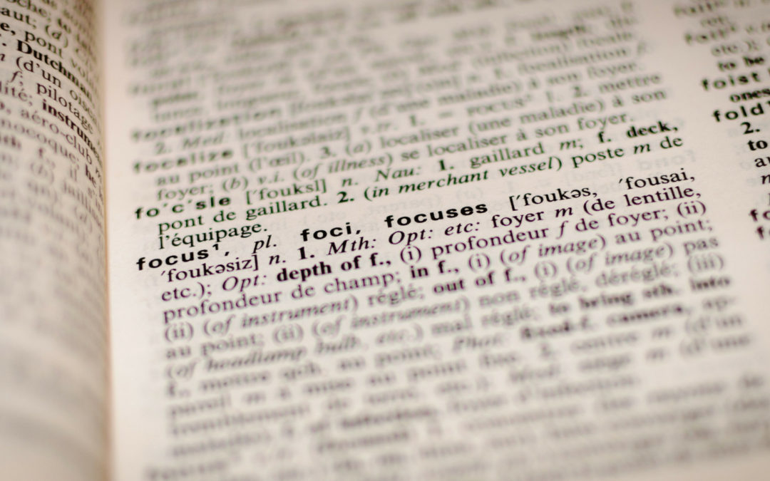 What's in YourLexicon?