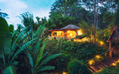 A Deeply Rooted VirtualRetreat